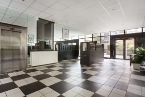 Photo Studio de 18 à 19 m² à 415 € n° 7