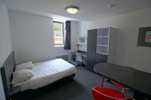 Photo Studio de 25 m² avec lit double n° 7