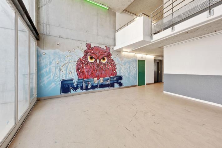 Résidence Maison des étudiants du Rhône photo n° 9